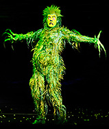 "The Grinch played by Stefan Karl performs in ""Dr. Seuss' How The Grinch Stole Christmas! The Musical,"" which opened at the Hanover Theatre for the Performing Arts on Friday, Nov. 6, 2015."