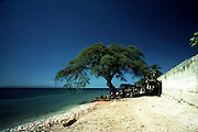 The beach at Luly, Haiti.