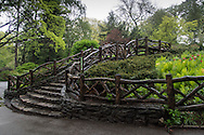 Shakespeare Garden in Central Park