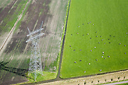 Nederland, Noord-Holland, Beemster, 14-07-2008; koeien rusten en grazen in de wei naast een hoogspanningsmast (onderdeel van het landelijke koppelnet); . .luchtfoto (toeslag); aerial photo (additional fee required); .foto Siebe Swart / photo Siebe Swart