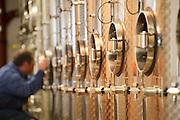 Weinkeller der Winzergenossenschaft Groß-Umstadt, Groß-Umstadt, Odenwald, Naturpark Bergstraße-Odenwald, Hessen, Deutschland | wine cellar of Winzergenossenschaft Groß-Umstadt, Gross-Umstadt, Odenwald, Hesse, Germany