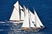 "France Saint - Tropez October 2013, Classic yachts racing at the Voiles de Saint - Tropez<br /> <br /> Start Classic Yachts Regatta<br /> <br /> <br /> C,A9,ELENA OF LONDON,""50,8"",GOELETTE AURIQUE/2009,HERRESHOFF<br /> <br /> C,/241,ASCHANTI ,35,GOELETTE MARCONI/1954,HENRI GRUBER"