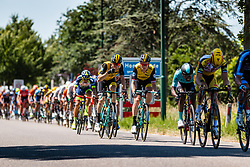 Peloton with Lars Boom and Jos van Emden of LottoNL - Jumbo at 2018 National Road Race Championships Netherlands for Men Elite, Hoogerheide, The Netherlands, 1 July 2018. Photo by Pim Nijland / PelotonPhotos.com | All photos usage must carry mandatory copyright credit (Peloton Photos | Pim Nijland)