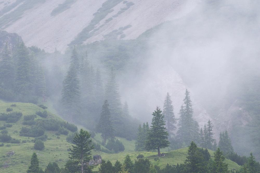Mountains in clouds, Malbun, Lichtenstein