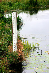 UK ENGLAND CAMBRIDGESHIRE WICKEN 7AUG06 - Water level mark at a drain in the Wicken Fen National Nature Reserve, managed by the National Trust is one of Britain's oldest nature reserve dating back to the late 1800s...jre/Photo by Jiri Rezac..© Jiri Rezac 2006..Contact: +44 (0) 7050 110 417.Mobile:  +44 (0) 7801 337 683.Office:  +44 (0) 20 8968 9635..Email:   jiri@jirirezac.com.Web:    www.jirirezac.com..© All images Jiri Rezac 2006 - All rights reserved.