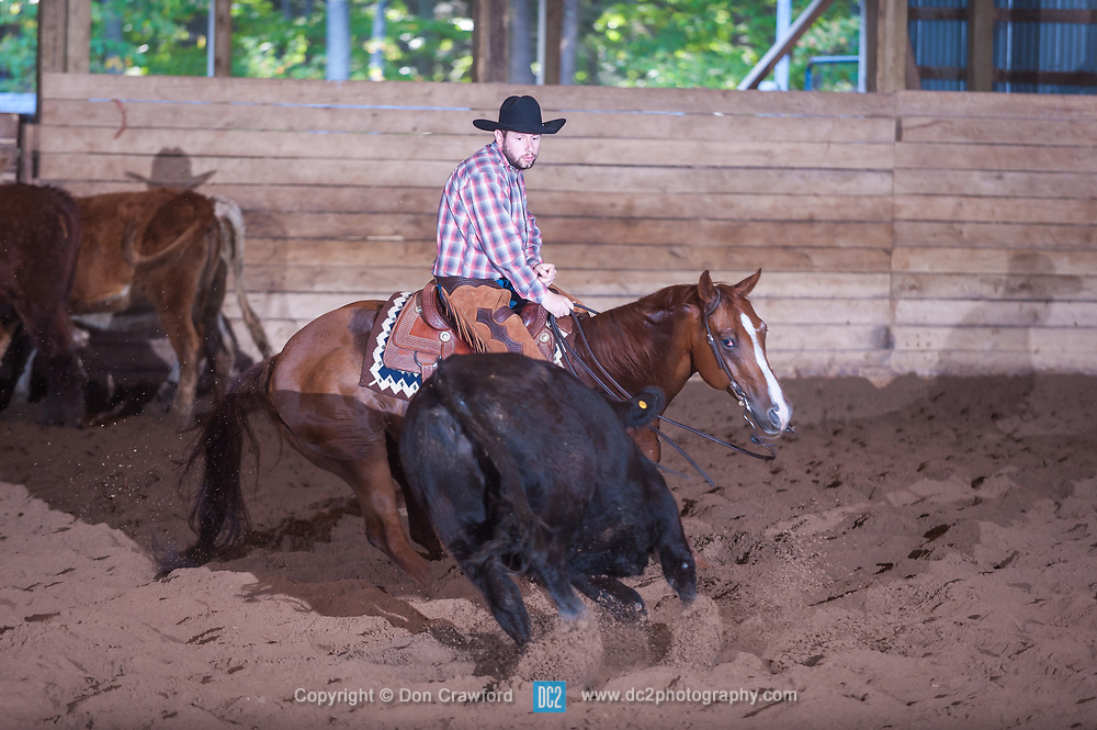 September 24, 2017 - Minshall Farm Cutting 6, held at Minshall Farms, Hillsburgh Ontario. The event was put on by the Ontario Cutting Horse Association. Riding in the Non-Pro Class is Eric Bouchard on The Rey Slim Shady owned by the rider.