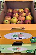 Nederland, Nijmegen, 9-2-2018Kartonnen dozen met appels liggen op een basisschool klaar om verdeeld te worden onder de kinderen. Het gaat om snoepfruit, een europees programma voor schoolfruit om te stimuleren dat kinderen gezonde etenswaren eten op school .Foto: Flip Franssen