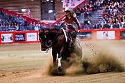 Marinne Benais on Saturday Whiz during the Equestrian NRHA European Derby Open Finals Equita Lyon 2017 on November 4, 2017 at Eurexpo Lyon in Chassieu, near Lyon, France - Photo Romain Biard / Isports / ProSportsImages / DPPI