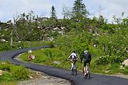 Radfahrer, Dreisesselberg, Bayerischer Wald, Bayern, Deutschland | cyclists, Mt. Dreisessel, Bavarian Forest, Bavaria, Germany