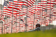A man take rest amongst 3,000 US flags are displayed at Pepperdine University to mark the 12th anniversary of the 9/11 terror attack, September 10, 2013 in Malibu, California. Photo by Ringo Chiu/PHOTOFORMULA.com)