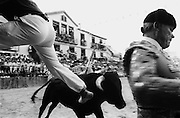 Bullfighting in Turegano, Spain.
