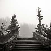 Stairs near trailhead - Paradise, Mt. Rainier National Park, WA