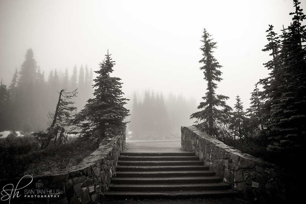 Stairs near trailhead - Paradise, Mt. Rainier National Park, WA