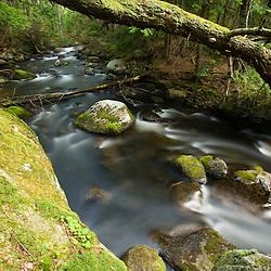 Katahdin Brook drains Katahdin Lake near Maine's Baxter State Park.