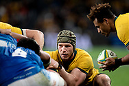 SYDNEY, AUSTRALIA - SEPTEMBER 07: David Pocock of the Wallabies ready to pack the scrum with Will Genia of the Wallabies about to feed the ball during the international rugby test match between the Australian Wallabies and Manu Samoa on September 07, 2019 at Bankwest Stadium in Sydney, Australia. (Photo by Speed Media/Icon Sportswire)