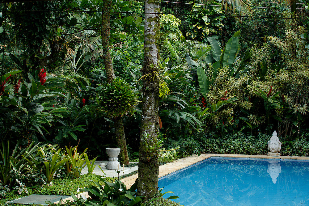 Sao Sebastiao, Brasil - December 20 of 2016: Gardening - beach house. Image by CAIO GUATELLI