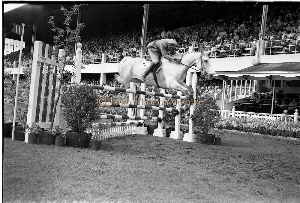 """09/08/1962<br /> 08/09/1962<br /> 09 August 1961<br /> RDS Horse Show, Ballsbridge Dublin, Thursday. <br /> Picture shows """"Pioneer"""" of Italy ridden by Captain Piero d'Inzeo."""