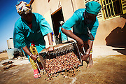 Women pour shea nuts on a concrete floor to dry them in the sun at the Si Yiriwa shea processing center in the town of Diolila, Mali on Friday January 15, 2010.