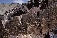 Mongolia. petroglyphs in Tashgait    Humorit Sum      / Petroglyphes à TASHGAIT. Sum de QOQMORIT   Mongolie  Les petroglyphes, dont l'origine remonte au paleolithique, se sont largement repandus durant la periode de l'âge du bronze et du fer. La Mongolie en possède une très grande quantite, repartie principalement au centre et à l'ouest du pays. Ces gravures sur rochers bruns representent la plupart du temps des animaux sauvages ou domestiques, mais egalement des chasseurs et cavaliers. Ceux photographies laissent apparaître des bouquetins, un cavalier (rocher inferieur) et un cerf (rocher median).... (20 km à l'Est du Sum de QOQMORIT dans l'aymag de GOV ALTAY, / /110    L920718a  /  P0007321