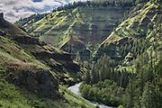 Wenaha River Trail, Blue Mountains, Umatilla National Forest, Oregon, USA.