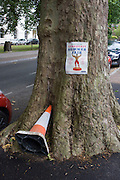 Leaning cone in tree trunk and summer fair poster in Camberwell, south london.