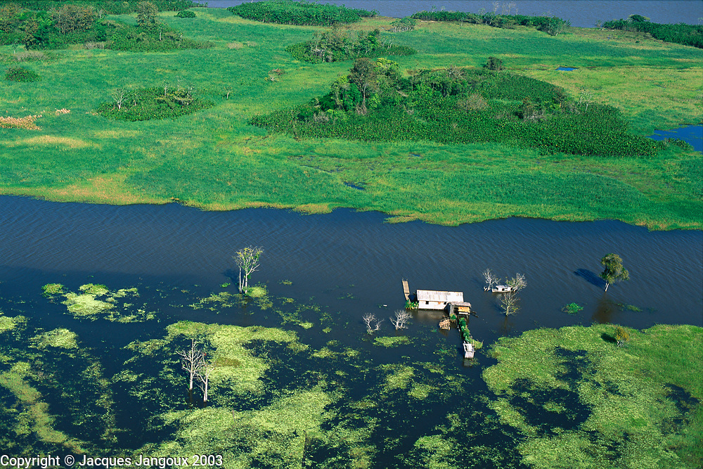 Aerial view of flooded houses in lower Amazon floodplain during high waters at end of rainy season, Pará, Brazil