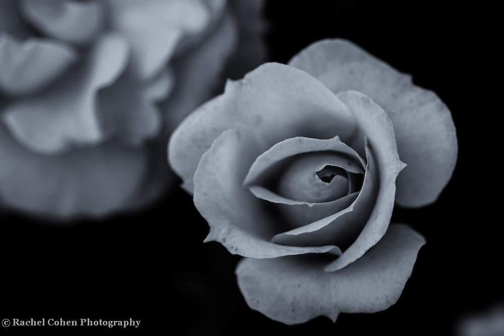 &quot;Enter the Darkness&quot;<br />