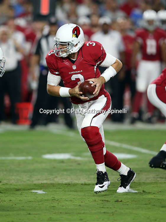 Arizona Cardinals quarterback Carson Palmer (3) looks to hand off the ball during the 2015 NFL preseason football game against the San Diego Chargers on Saturday, Aug. 22, 2015 in Glendale, Ariz. The Chargers won the game 22-19. (©Paul Anthony Spinelli)