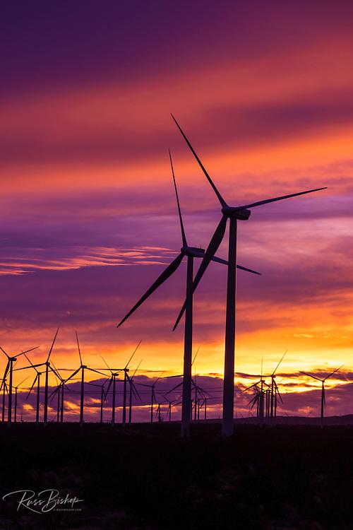 Silhouetted wind turbines at sunset, Mojave, California USA