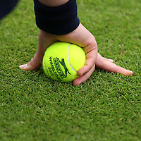 Wimbledon Features 2013