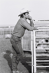 Cowboy standing outside cattle pen