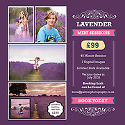 Lavender Mini Sessions 2018