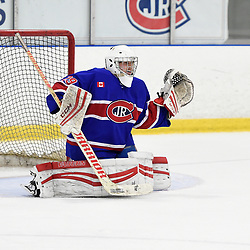 TORONTO, ON  - OCT 29,  2017: Ontario Junior Hockey League game between the Toronto Jr. Canadiens and the Toronto Patriots, Dalton Ewing #29 of the Toronto Jr. Canadiens protects the crease during the third period.<br /> (Photo by Andy Corneau / OJHL Images)