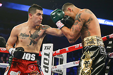 January 24, 2015: Brandon Rios vs Mike Alvarado III