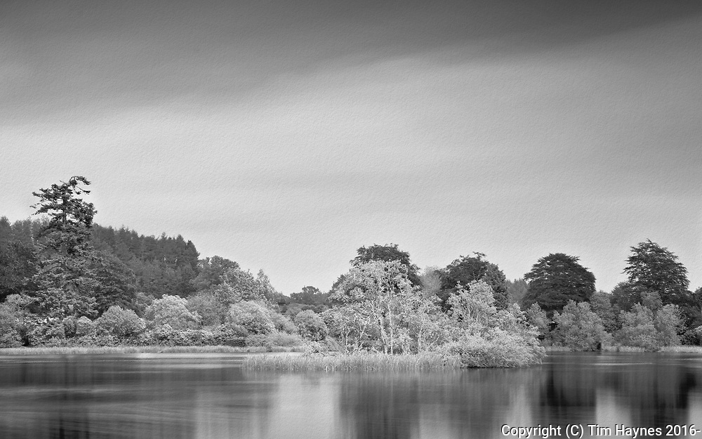 A rather nice large tree-surrounded pond in Buchanty, Perthshire.<br /> <br /> Experimental processing: blending a long exposure for the cloud movement with a shorter one for the contrasty sharp detail in the trees.