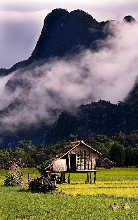 A rice field at Tham Lot Khong Lo, Laos.