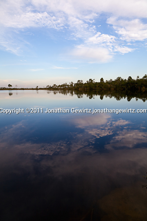 The sky reflects from the surface of Pine Glades Lake in Everglades National Park. WATERMARKS WILL NOT APPEAR ON PRINTS OR LICENSED IMAGES.