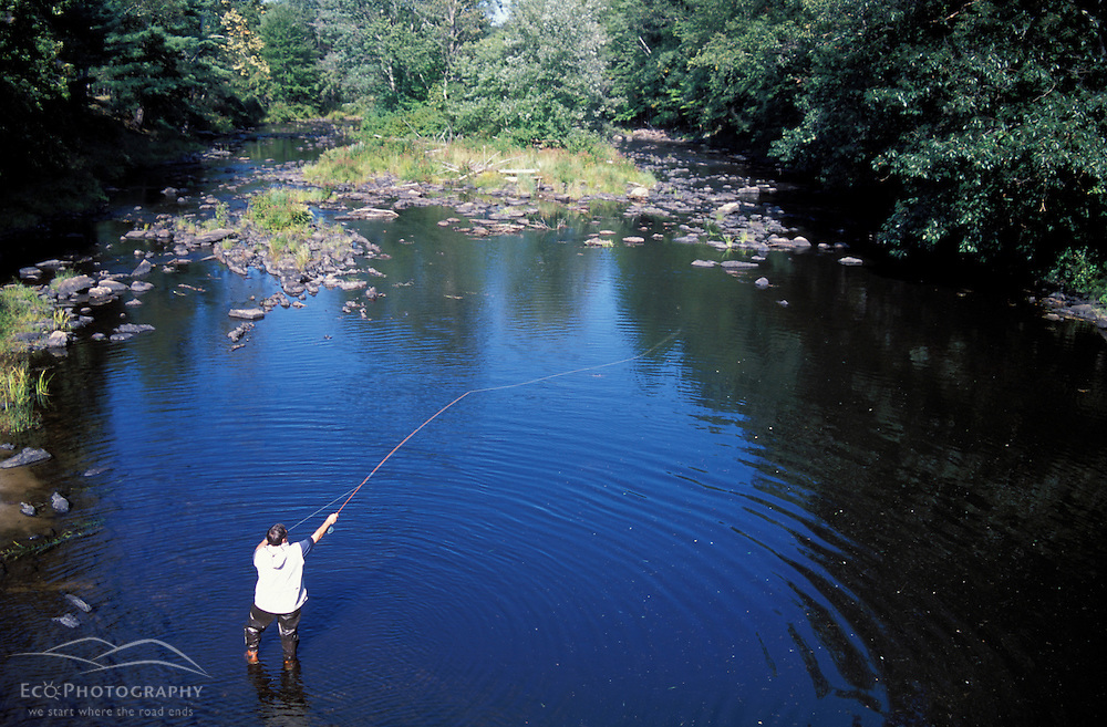 Fly fishing on the Lamprey River, just below the Lee-Hook Rd. Bridge.  Lee, NH