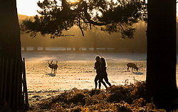 © Licensed to London News Pictures. 28/12/2017. London, UK. Joggers run through a frosty Richmond Park. Tonight is predicted to be the coldest night of the year with temperatures as low as minus 15 °C in some parts of the UK. Photo credit: Peter Macdiarmid/LNP