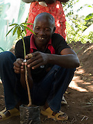 David Odonga, 45, was inspired to take up farming after his wife started attending training with Send a Cow. Together they have built up a profitable business grafting orange and lemon trees. Their farm now feeds their 16 children with surplus to sell at market.