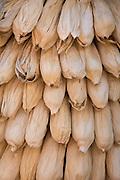 Dried corn in husks; El Parador de Moray restaurant, Sacred Valley, Peru.