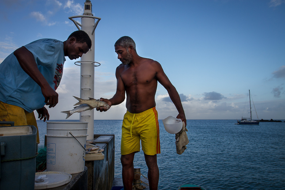 Anse La Raye, Saint Lucia: Fishermen inspect the previous night's catch.