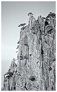 Cliff-face, Huangshan Mountains, China.