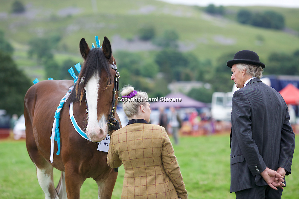 Becky Lee and Colloegrove Banksy (14 months)<br /> Winner  Young Handler Class
