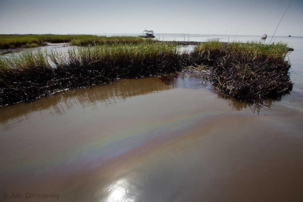 July, 7, 2010, St. Mary's Point in Barataria Bay at the edge of the Gulf Of Mexico saturated with oil from the BP oil spill.