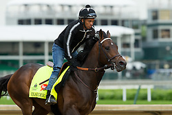 Derby 142 hopeful Exaggerator with Peedy Landry up were on the track for training, Wednesday, May 04, 2016 at Churchill Downs in Louisville.
