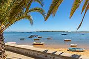 Boats in lagoon behind offshore sandbar, framed by palm trees, Vila Nova de Cacela, Algarve, Portugal, Southern Europe - Ria Formosa Natural Park