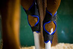 Magnetic Boots<br /> Knokke Hippique 2019<br /> © Hippo Foto - Sharon Vandeput<br /> 30/06/19