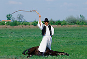 Hungarian Csikos cowboy giving display of horsemanship skills on The Great Plain of Hungary  at Bugac, Hungary