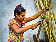 22 NOVEMBER 2017 - YANGON, MYANMAR:  A woman peels sugarcane sold to stevedores and port workers as a snack in one of the small domestic cargo ports on the Twante Canal in Yangon.   PHOTO BY JACK KURTZ